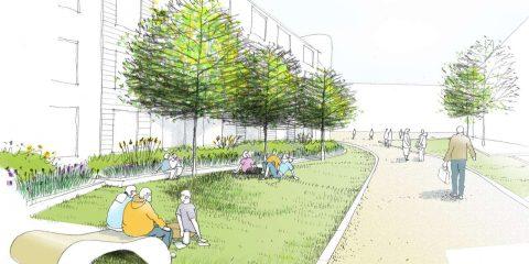 طراحی و اجرای سبز