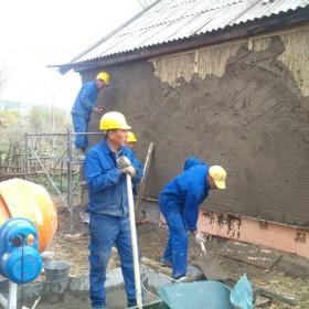 آموزش ساخت دیوار سبز