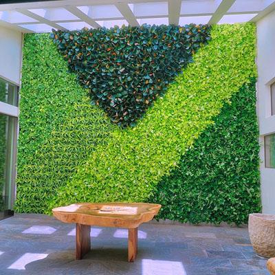 خرید دیوار سبز