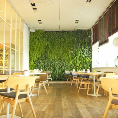 همه چیز در مورد دیوار سبز