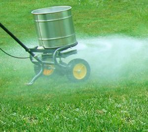 اثر کود مایع در چمن کاری