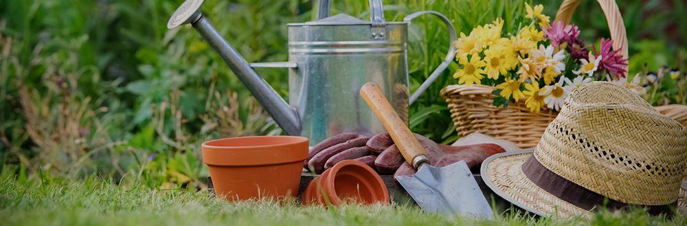 خدمات باغبانی و کود مایع