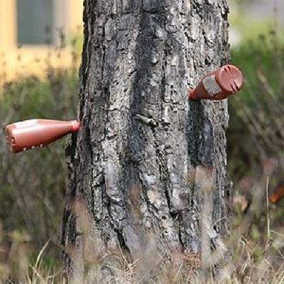 تزریق کود مایع به تنه درخت